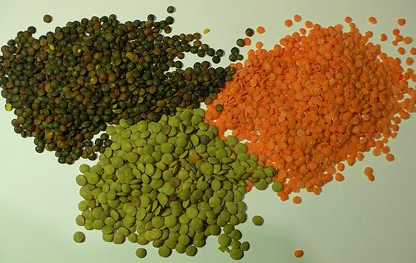 lentils03